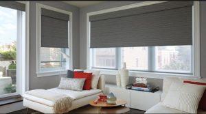 Bryn Mawr PA window shades 300x167